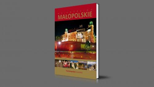 Małopolskie | Województwo małopolskie | 2011